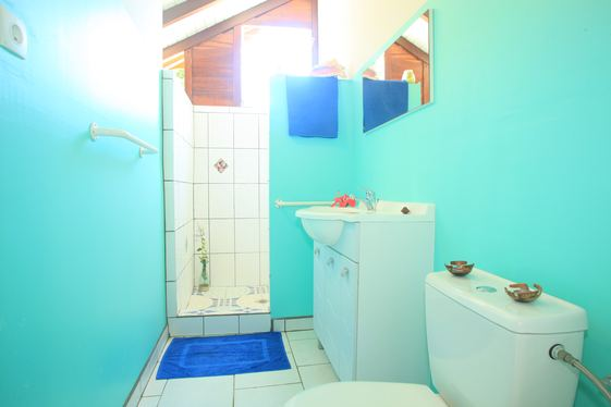 bathroom 3 persons apartment in Ferry Deshaies